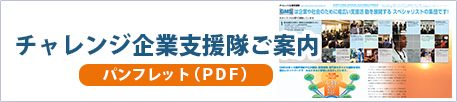チャレンジ企業支援隊ご案内 パンフレット(PDF)